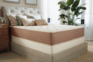 Best Budget Hybrid Mattress - Eco Terra Hybrid Mattress